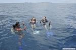 Resort Water Sports